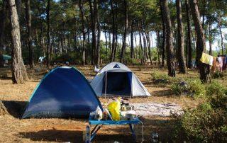 orman kampı akyaka