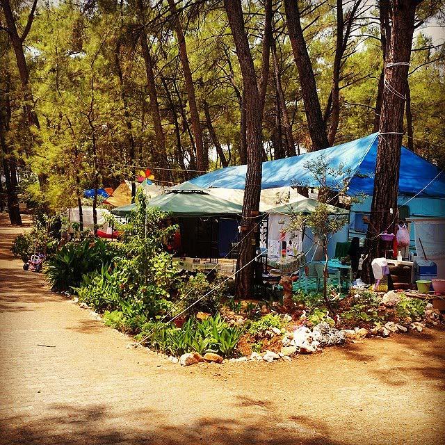 orman kampları