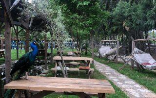kamp alanı muğla